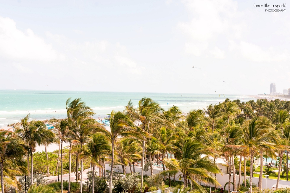 faena-miami-beach-wedding_0137